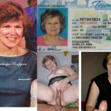 shirley-id-collage-full
